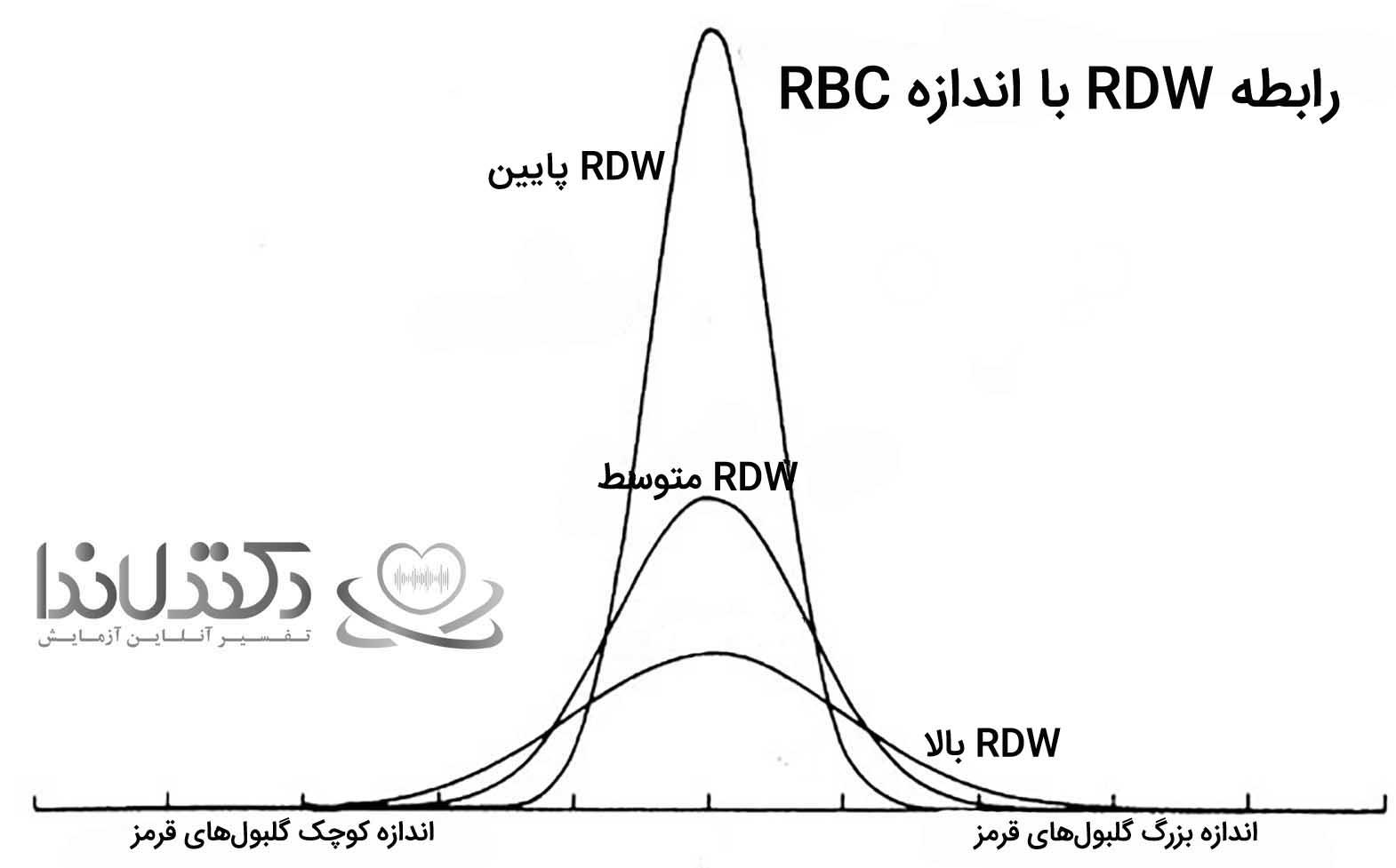 Rdw-آزمایش